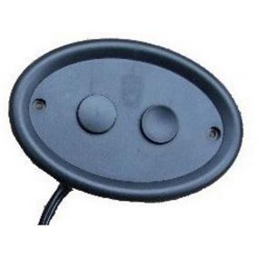 2 Button Remote (56720)